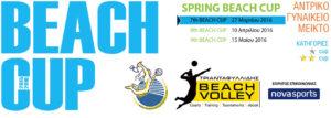 beach_cup_banner